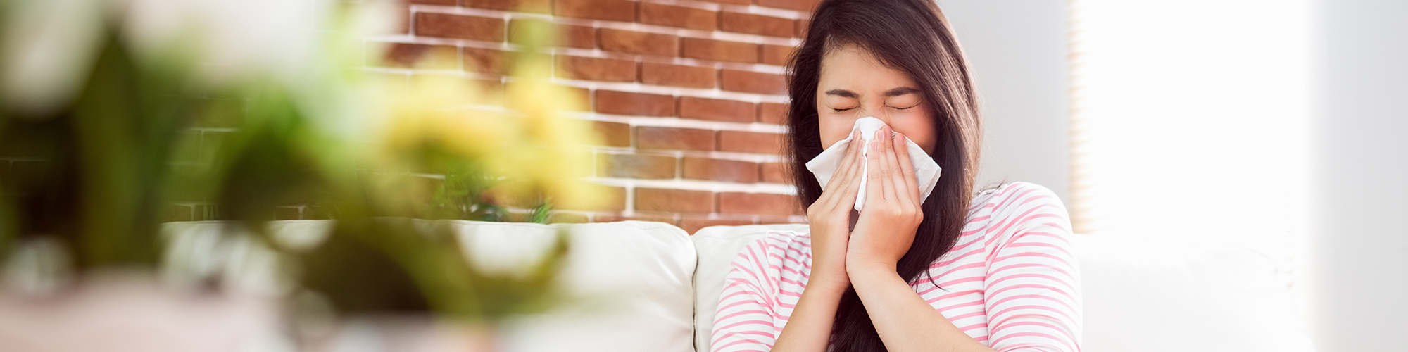 How to Protect Yourself Against Desert Pollens & Stay Allergy Symptom Free This Spring